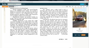 Report on skull page 2. Click on image to enlarge.