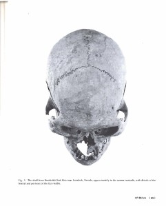 original-skull-from-humboldt-sink-from-a