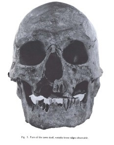 original-skull-from-humboldt-sink-from-f