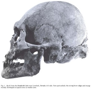original-skull-from-humboldt-sink.jpg?w=