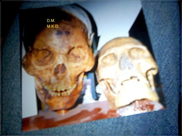 Giant skull jpg deblurred enhanced watermark